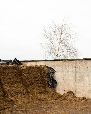 silage bales - p1214m1116217 by Janusz Beck