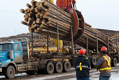 Weyerhaeuser Pulp Mill and Log Yard, Grande Prairie, Alberta, Canada - p343m1107086 by Peter Essick