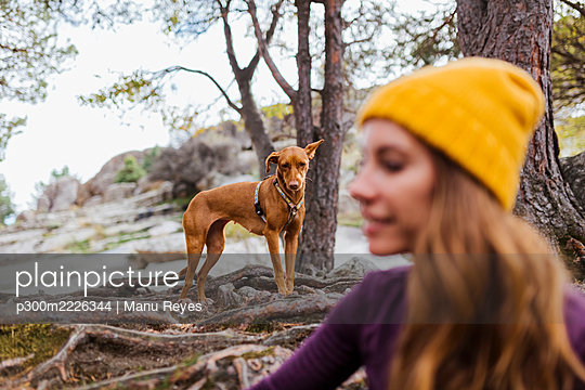 Dog looking at woman sitting in forest at La Pedriza, Madrid, Spain - p300m2226344 by Manu Reyes