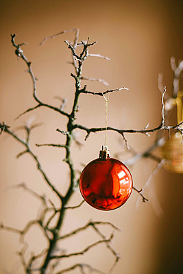 Close-up of red bauble hanging on twig at home during Christmas - p1166m1547025 by Cavan Images
