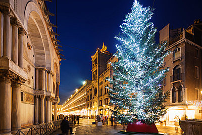 Christmas tree in St. Marks Square, San Marco, Venice, UNESCO World Heritage Site, Veneto, Italy, Europe - p871m1013084 by Christian Kober