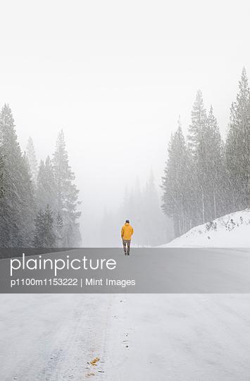 p1100m1153222 von Mint Images