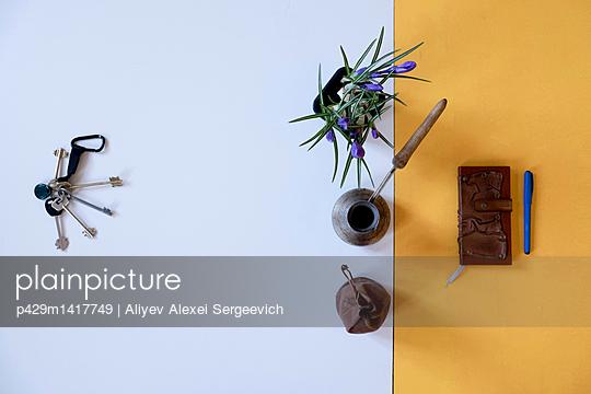 p429m1417749 von Aliyev Alexei Sergeevich