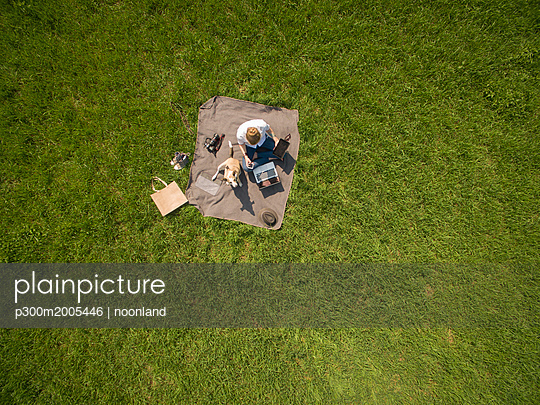 Bird's eye view of woman sitting on blanket on meadow with dog using laptop and tablet - p300m2005446 von noonland