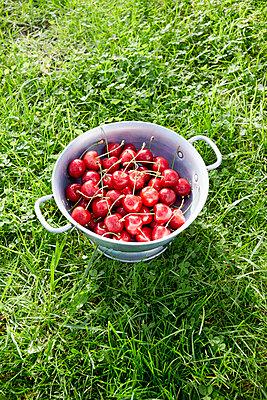 Kirschen pflücken - p464m1172218 von Elektrons 08