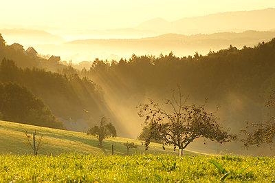 Sonnenaufgang - p1115m890242 von Nikolai Buroh