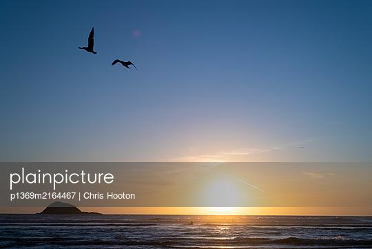 Sunset at Muriwai  - p1369m2164467 by Chris Hooton
