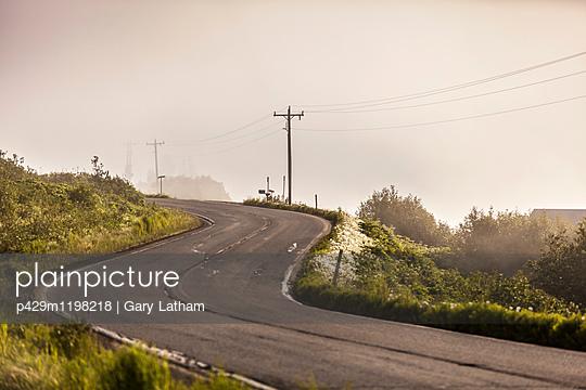 p429m1198218 von Gary Latham