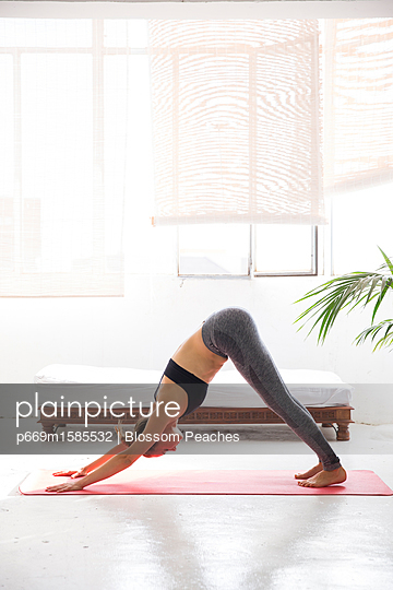 plainpicture - plainpicture p669m1585532 - Woman Practicing Yoga, Down... - plainpicture/Ableimages/Blossom Peaches
