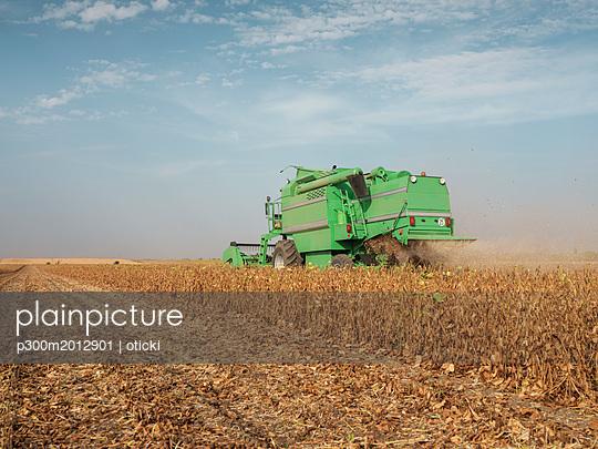 Serbia, Vojvodina, Combine harvester in soybean field - p300m2012901 von oticki