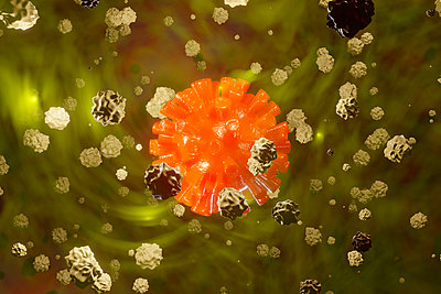 3D Rendered Illustration of a Corona virus surrounded by white blood cells - p300m2170793 by Spectral photography