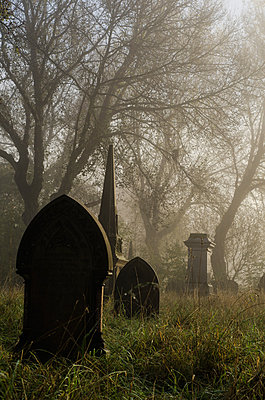 Friedhof im Nebel - p794m883326 von Mohamad Itani