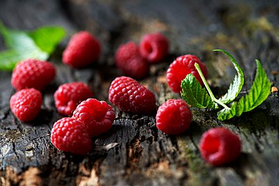 Raspberries and leaves on tree bark - p429m1062903 by Diana Miller