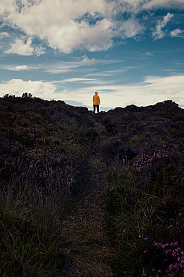 Woman in heathland - p470m2108852 by Ingrid Michel