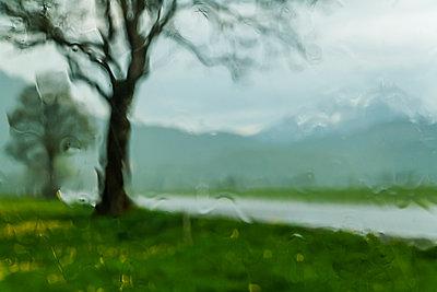 Regen - p867m1031631 von Thomas Degen