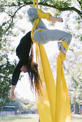 Aerial Silks Performer Hanging On A Tree - p1166m2106807 by Cavan Images