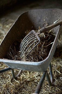 Im Stall - p877m1475166 von Julia Wagner