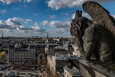 Kathedrale Notre-Dame de Paris - p1243m1515690 von Archer