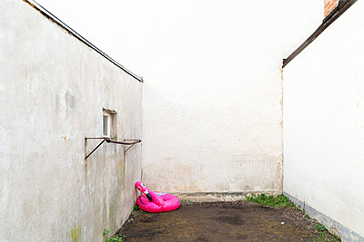 Inflatable pink flamingo in the backyard - p1625m2210793 by Dr. med.