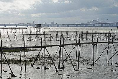 Fischerhütten an der Loiremündung - p162m2149963 von Beate Bussenius