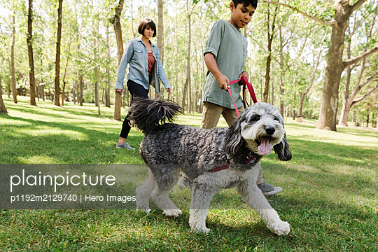 Mother with son walking dog in urban park - p1192m2129740 by Hero Images
