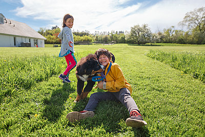 A joyful boy wrestles with a puppy, smiling sister in background - p1166m2165928 by Cavan Images