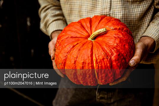 05.09.18 - p1100m2047016 by Mint Images