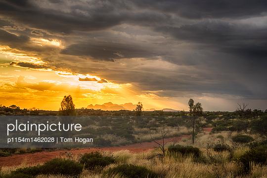 Uluru National Park at sunset - p1154m1462028 by Tom Hogan