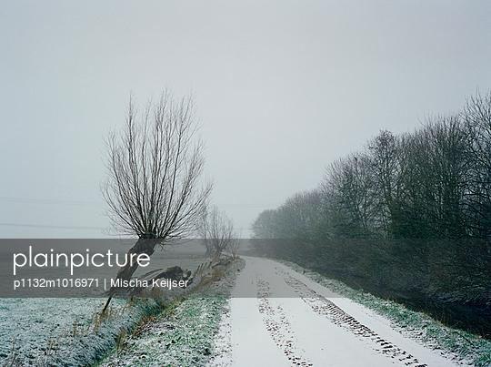 Trees in winter - p1132m1016971 by Mischa Keijser