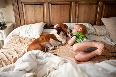 Toddler boy kissing a basset hound dog next to him at home in bed - p1166m2148799 by Cavan Images