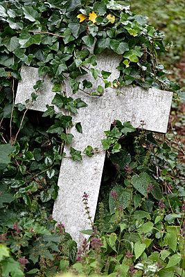 Graveyard  - p238m831904 by Anja Bäcker