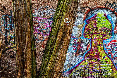 Graffiti - p417m793556 by Pat Meise