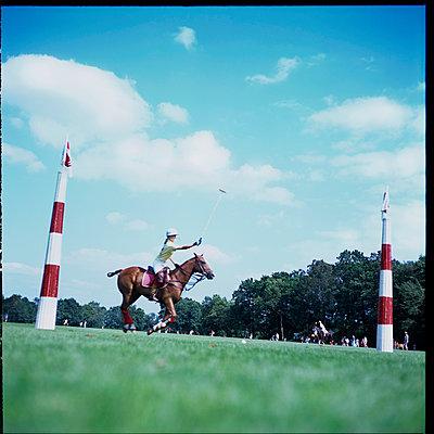 Polo - p427m966757 von R. Mohr
