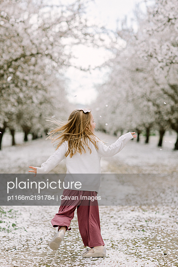 Preschool girl dancing in an almond orchard - p1166m2191784 by Cavan Images