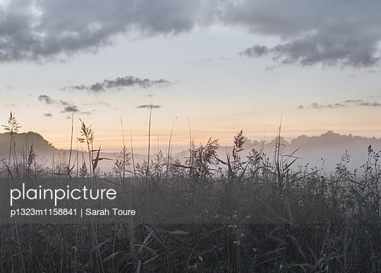 p1323m1158841 von Sarah Toure