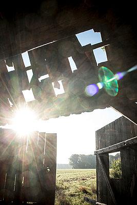 Old barn, Lower Saxony - p403m937574 by Helge Sauber