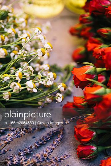 Flowers at spa - p1166m2084330 by Cavan Images
