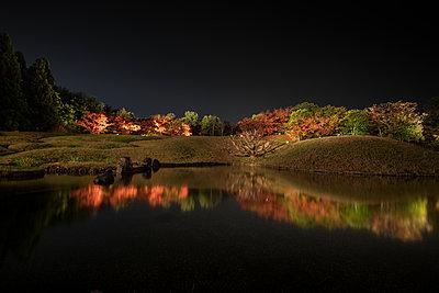 Kyoto garden at night - p1408m1465060 by Guy Nesher