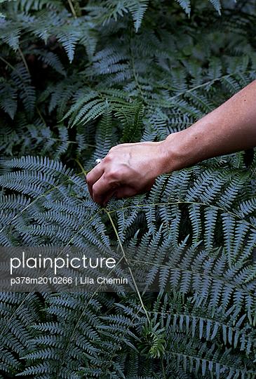 p378m2010266 von Lila Chemin
