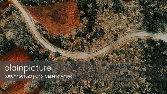 Spain, Catalonia, Lleida, Aerial view of road through forest in autumn - p300m1581320 von Oriol Castelló Arroyo