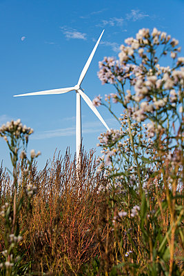 Wind turbine in the countryside - p1079m1137125 by Ulrich Mertens
