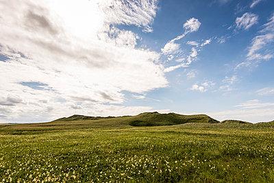 Green Highlands - p1142m966105 von Runar Lind