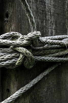 Old rope - p1228m1574840 by Benjamin Harte