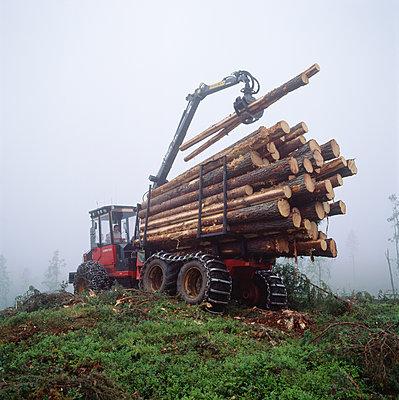 Crane full of logs - p575m1074881f by Stefan Oertenblad