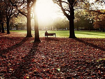 Lange Schatten im Park - p8870056 von Christian Kuhn