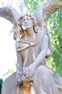 Detail on a graveyard in Spain - p8850136 by Oliver Brenneisen