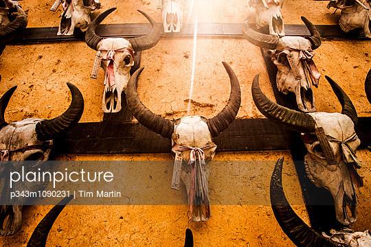 p343m1090231 von Tim Martin
