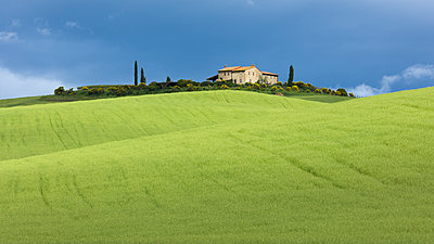 A single Tuscan farmhouse perched on top of a hill beyond verdant rolling green fields of the Val d'Orcia, UNESCO World Heritage Site, Tuscany, Italy, Europe - p871m2023312 by Garry Ridsdale