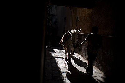 Man with horse at twilight - p1007m1221904 by Tilby Vattard