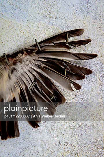 p451m2288937 by Anja Weber-Decker